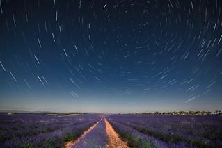 Lavada bajo las estrellas