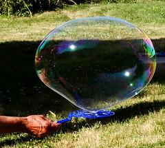 Fourth of July Bubbleworks (starmist1) Tags: bubbles soapbubbles largebubbles backyard 4th0fjuly party bubbleworks family friends food fun frolic stories gossip grass trees pergola wandsandpans