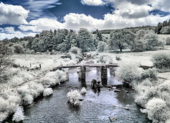 You can lead horse to water....... (Elm Studio) Tags: copyright copyrighted jeffmorgan elmstudio jeffelmstudiocom wwwelmstudiocom 4407542933700 isleofwight 2017 appicoftheweek morgan medieval dreamy eastdartriver europe england gb postbridge uk dartmoor infrared panasonic mft colourchannelswap falsecolour nikcolorefexpro niksilverefex bridge farmland horse river stoneclapperbridge stonewall stream sky midday afternoon trees painted clouds bushes person gbr