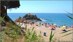 Día de playa - Sant Pol de Mar - Barcelona (Luisa Gila Merino) Tags: sombrilla mediterráneo roca cieloazul azul rojo amarillo arena litoral vegetación gente personas