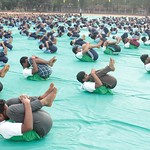 "International_Yoga_Day_2017 (114) <a style=""margin-left:10px; font-size:0.8em;"" href=""http://www.flickr.com/photos/127628806@N02/35782267691/"" target=""_blank"">@flickr</a>"