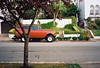 Scout in the Forest (Robert Ogilvie) Tags: contax contaxt2 zeiss 38mm28 gwsf foundinsf