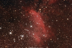 IC4628 Close-up - The Prawn Nebula - Nebulosa do Camarão (Wellerson Lopes) Tags: nebulosa nebula hidrogenregion space espaço stars estrelas deepsky céuprofundo astrofotografia astrophotography astronomia astronomy hiiregion emissionnebula
