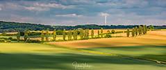 Zuid Limburg - the Netherlands (Henk Verheyen) Tags: landscape landschap limburg nl nederland netherlands zuidlimburg dutchmountains green groen heuvels lente spring