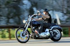 Harley-Davidson 1706141752w (gparet) Tags: bearmountain bridge road goattrail goatpath scenic overlook outdoor outdoors motorcycle motorcycles motorcyclist windingroad curves twisties