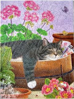 Cat Nap (Anne Mortimer)