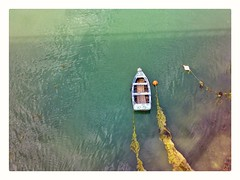 Waiting (Develew) Tags: water boat rowingboat moored rope seaweed weed river brittany latrinite blue green vertical france kerisper