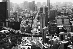 Tiny Tokyo (Kim Yokota) Tags: tokyotower tokyo japan 2017 observationdeck nikond7000 nikonafsnikkor24mmf14ged blackandwhite city cityscape aerialview tiltshift