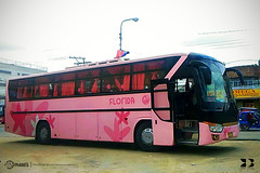 GV Florida Transport, Inc. - 008 (keso_de_bola) Tags: philbes philippine bus enthusiasts society 008 gv florida transport del monte motor works dm14 nissan diesel rb46s daewoo de12t