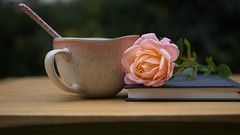 Summer Days (cathbooton) Tags: garden rose peach tea cup spoon table book summer british july canon cuppa canoneos cannon6d canonusers canonphotography peaceful 1025fav