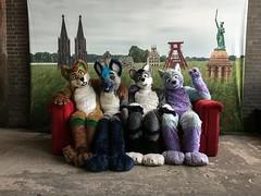 A little #fursuiting with #Nighthawk, Spot and Arco Fluffypaw at Zeche Zollverein in Essen ^-^ #fursuit #meineheimatnrw #zechezollverein (Keenora Fluffball) Tags: keenora fursuit furry kee
