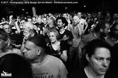 2017 Bosuil-Het publiek bij Hoodoo Monks en The Red Devils 12-ZW