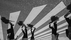 斑馬線|新宿 Shinjuku (里卡豆) Tags: shinjuku 新宿 日本 東京 關東 japan tokyo 東京都 kanto olympus penf panasonicleicadg12mmf14 panasonic leica dg 12mm f14