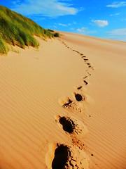 Footprints (dreamincontrast) Tags: dreamincontrast dreamincontrastportfolio colour scotland bright bold dream contrast footprints steps beach sand seaside forvie sands forviesands golden summer sun blue sky cloud green grass