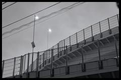 Tokyo Metropolitan Area: Impressions of a great city (Matthias Harbers) Tags: panasonic dmctx1 photoshop elements topaz tokyo metropolitan lumix zs100 tz100 living bw black white monochrome city street life impression blackandwhite photo border tree car classic japan hdr photomatix 3xp