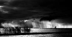 La pluie qui chante... (Sabine-Barras) Tags: suisse switzerland lake lac monochrome blackandwhite bnw bw rain pluie ciel sky clouds nuages watersacpe