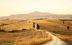 Elysium (drusus) Tags: cypress goldenhour landscape sunset gladiator sanquirico italy villa hills elysium summer agriturismo travel valdorcia 70d pienza tuscany