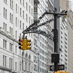 Stop (roberto emme) Tags: iloveny ny nyc newyork robertoemme d800e nikon light way strret urban crossway cross bird stop