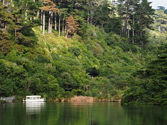Zealandia - Lower Karori Reservoir (digitaltrails) Tags: zealandia karoribirdsanctuary newzealand