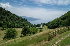 vista sul lago (Schub@) Tags: gardasee lagodigarda tignale brescia trentino lake see landscape landschaft italia italien italy sony a6000 alpha emount ilce6000 e pz 18105mm f4