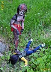 №456 (OylOul) Tags: 16 action figure hottoys predator monster high doll
