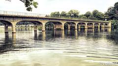 Pont de Halen, lac de Robertville (Lцdо\/іс) Tags: robertville lцdоіс waimes eifel ardennen ardennes halen pont bridge belgique belgium