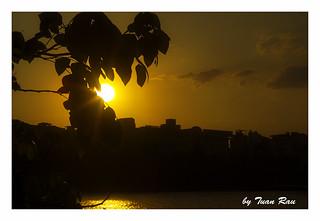 SHF_9970_Sun set