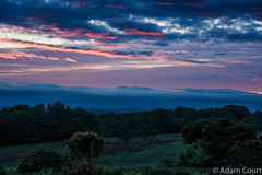 Uplit (adam.court89) Tags: dawn sunrise morning glow forest clouds moody nikon d7200 18105