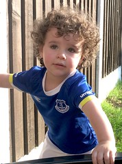Logan aged 22 months (Fraser Mummery) Tags: hair face curly grass brown fence garden portrait gorgeous blue strip kit scouse liverpool everton football boy child outdoor son