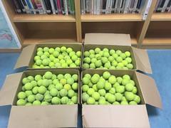 pelotas de tenis en la Biblioteca de la Facultad de Ciencias de la Universidad de Zaragoza (Biblioteca de la Universidad de Zaragoza) Tags: pelotas tenis ruido silencio buz bibliotecadelauniversidaddezaragoza universidaddezaragoza zaragoza 2017 bibliotecadelafacultaddeciencias