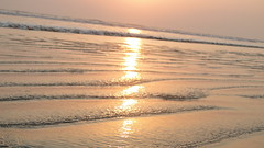 DSC01829 (FILEminimizer) (Niaz Islam Arif) Tags: coxsbazar কক্সবাজার