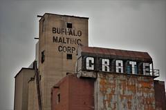 IMG_7371 (Chris Podosek) Tags: buffalomaltingcorp silo buffalo malting abandoned rehab restore wny wnyimages 716 industrial chrispodosek