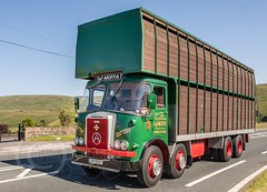 Last Motormans Run June 2017 058 (Mark Schofield @ JB Schofield) Tags: road transport haulage freight truck wagon lorry commercial vehicle hgv lgv haulier contractor foden albion aec atkinson borderer a62 motormans cafe standedge guy seddon tipper classic vintage scammell eightwheeler
