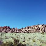 North American Desert thumbnail