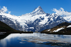 20170610-40-Swiss Alps and Bachalpsee (Roger T Wong) Tags: 2017 bachalpsee berncanton bernesehighland berneseoberland first rogertwong sel2470z schreckhorn sony2470 sonya7ii sonyalpha7ii sonyfe2470mmf4zaosscarlzeissvariotessart sonyilce7m2 switzerland hike hills ice lake mountains outdoors snow tramp travel trek walk water