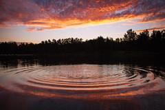 Rippled Sunset || YARRAMUNDI || NSW (rhyspope) Tags: australia aussie nsw new south wales yarramundi nepean hawkesbury river lake water pond splash ripple sunrise sunset nature rhys pope rhyspope canon 5d mkii