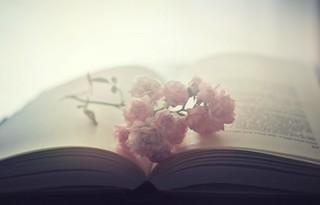 La lecture...