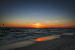 A Florida February Sunset (Brian 104) Tags: beaches florida pcb sunsets reflection waves gulfofmexico