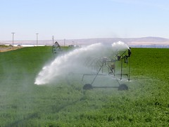 Whole Lotta Water (KevinCole509) Tags: water irrigation sprinkler circleline franklincounty easternwashington washingtonstate kevincole509 ag agriculture farm farms farming