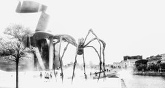 Danger (frederic.gombert) Tags: bilbao spider people black white bw cityscape museum street river light city spain landscape downtown
