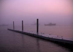 The morning fog (Patricia McAtee - Photos of Maine) Tags: fishing harbor jonescreek fog serenity morning morninglight earlymorning outdoor seacoast