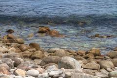 IMG_0070_72 Pebble Beach HDR (vicjuan) Tags: 20170625 美國 usa 加州 california montereycounty hdr tonemapping pebblebeach geotagged geo:lat=36608672 geo:lon=121953878 海 sea 太平洋 pacificocean