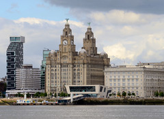 Royal Liver Building and Museum of Liverpool (Mike_J_G) Tags: royal liver building museum liverpool