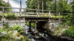 _61A4247.jpg (fotolasse) Tags: stenfors natur nature sweden sverige småland kronoberg å vatten water river bäck sten grönt green canon hdr 16x9 tingsryd