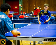 BATTS1706JSSb -504-2-141 (Sprocket Photography) Tags: batts normanboothcentre oldharlow harlow essex tabletennis sports juniors etta youthsports pingpong tournament bat ball jackpetcheyfoundation