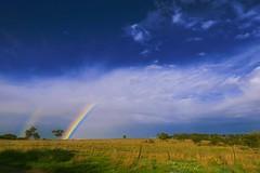 Winter Skyscape! (maginoz1) Tags: surreal sky rainbow abstract art manipulate curves gumtree winter july 2017 bulla melbourne victoria australia canon g3x