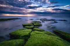 Rocks (Matt Creighton) Tags: kure beach north carolina ocean atlantic sunrise longexposure nikond750 tamron 1530 oceanscape seascape flickrsbest explore
