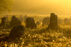 Carnac (Faouic) Tags: france bretagne morbihan carnac kermario alignements menhirs leverdesoleil