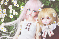 Rin and Momo (T e s l a) Tags: volks f01 megu nana sd10 superdollfie foursisters bjd rosenlied holidays child mignon