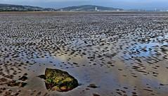Across Swansea Bay (jeansmachines24) Tags: swansea bay seascape lowtide seagrass textures summer2017 rock city horizon tower meridean